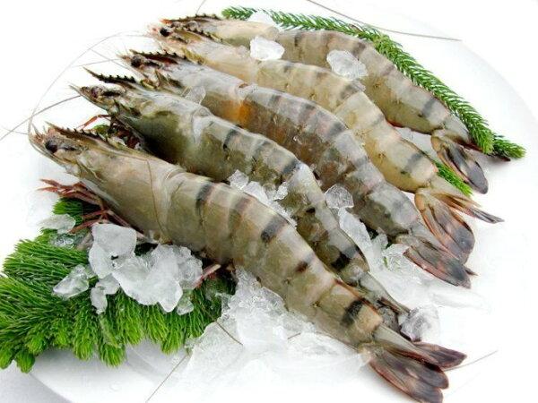 【大和水產】深海大草蝦(6P)