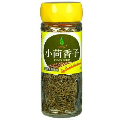 《飛馬》小茴香子‧Cumin seeds-35g