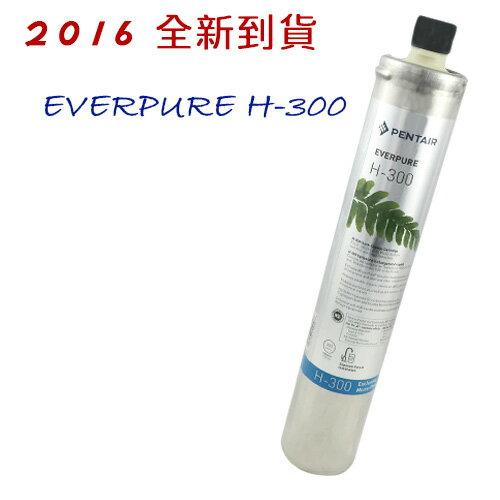 EVERPURE 美國原裝進口濾心 H-300  2016全新到貨