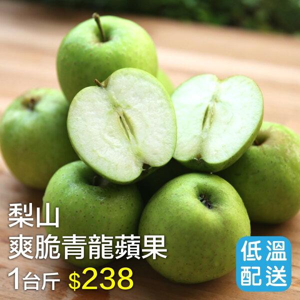 梨山爽脆青龍蘋果 1台斤(約5~7入)