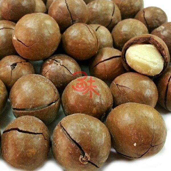 (澳洲) 烘焙 帶殼夏威夷豆  夏威夷 火山豆 附贈剝殼器  1包 600 公克 特價 280 元