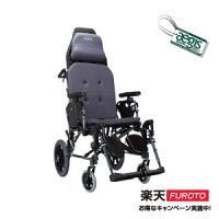 銀髮族用品與保健躺式輪椅(潛隨挺)