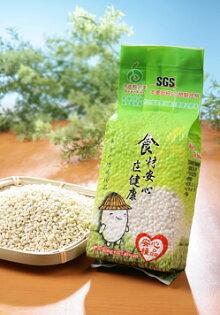 【安心糧品】大麥仁(洋薏仁) Barley (500g/包)