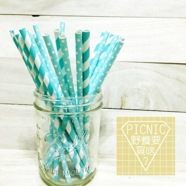 《野餐要買啥》Tiffany湖綠彩色環保紙吸管(宴會派對生日婚禮梅森瓶果汁飲料玻璃罐)
