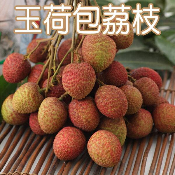 【農夫家】★輸日嚴選★大樹玉荷包荔枝,5台斤免運