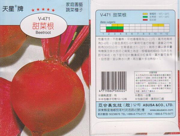 【尋花趣】天星牌 甜菜根  蔬菜種子 每包約10粒 保證新鮮種子