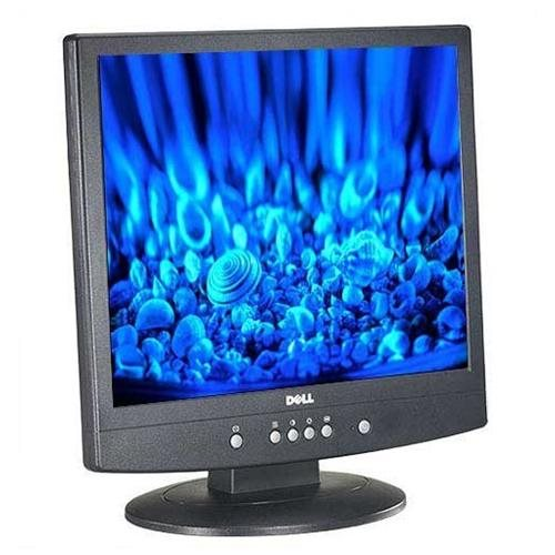 Dell 17' / 17 inch LCD Panel, Model # E171FP [Electronics] 0