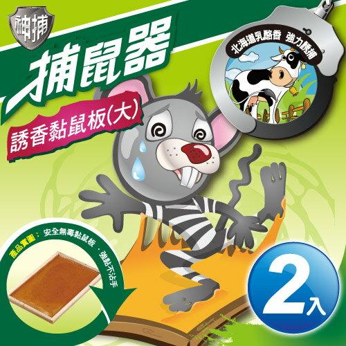 TheLife 樂生活:神捕超值2入誘香黏鼠板(大)-乳酪香(MP0116L)