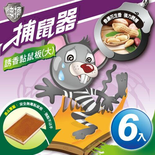 TheLife 樂生活:神捕超值6入誘香黏鼠板(大)-花生香【MP0117L】(SP0095L)