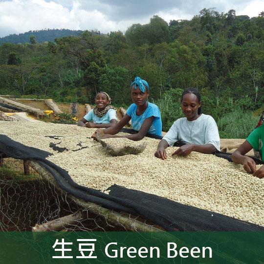 《未烘焙生豆》衣索比亞耶加雪菲聯盟水洗耶加雪菲哈瑪合作社G1