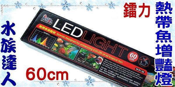 ~水族 ~鐳力Leilih~熱帶魚增豔燈.60cm W~R1~20 ~LED  2尺