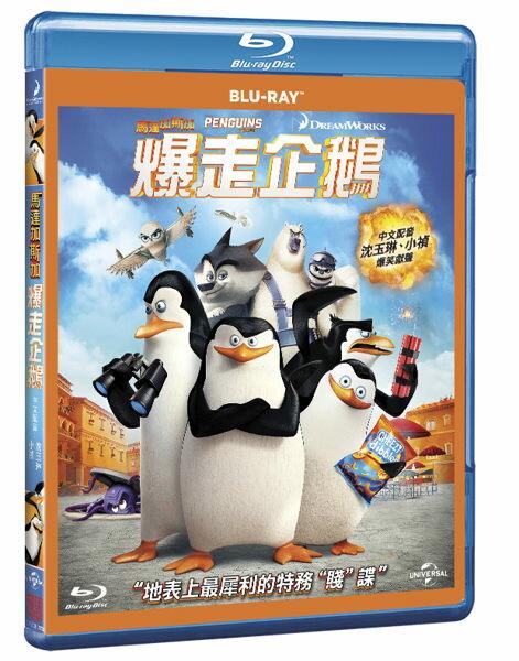 【停看聽音響唱片】【BD】馬達加斯加爆走企鵝
