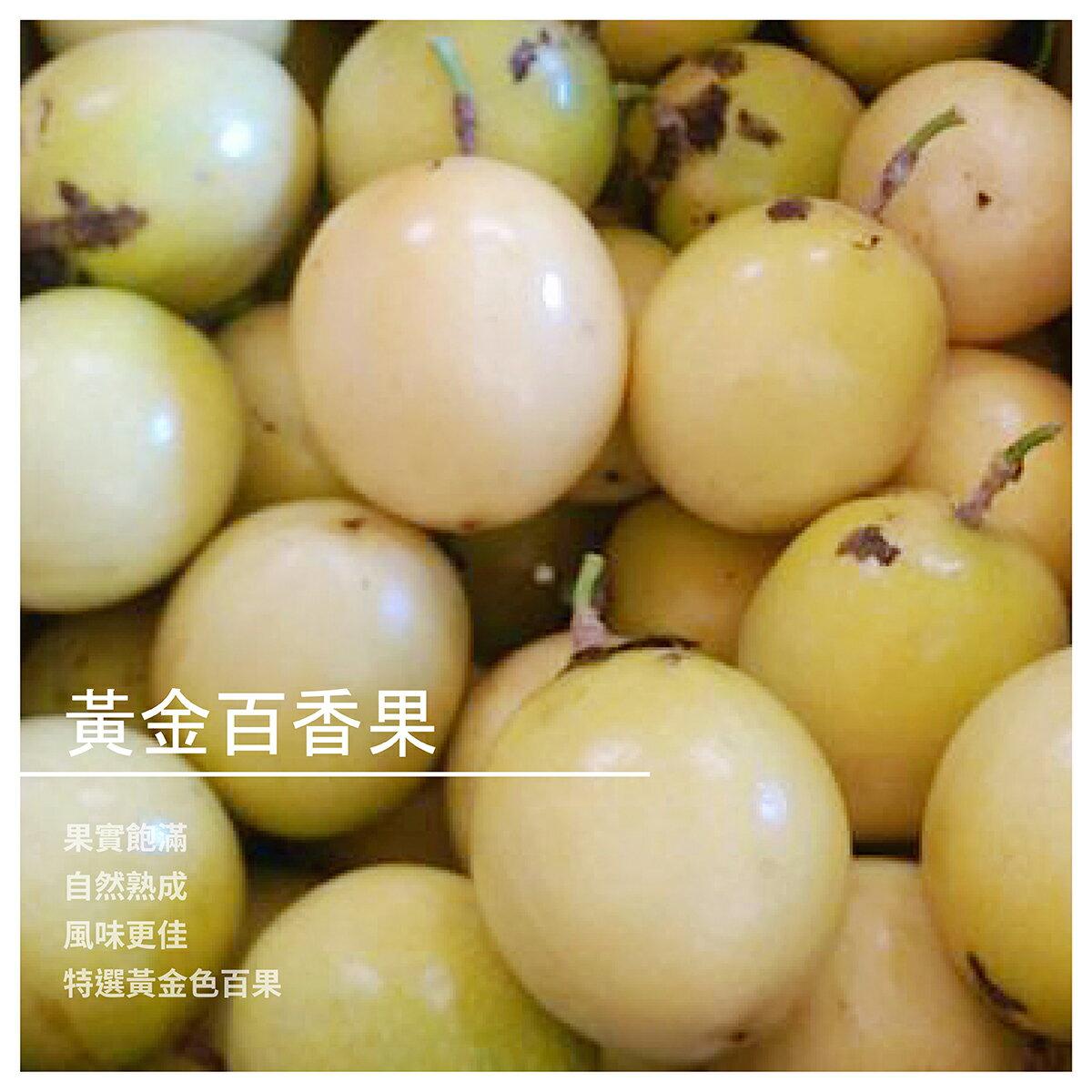 【一心百香果】黃金百香果/5斤裝