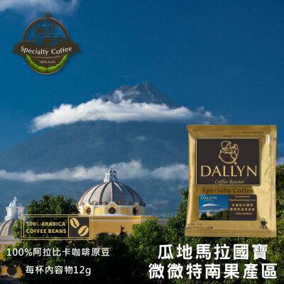 【DALLYN 】瓜地馬拉極品國寶 微微特南果產區濾掛咖啡100入袋 Guatemala Huehuetenego   | DALLYN世界嚴選莊園 1