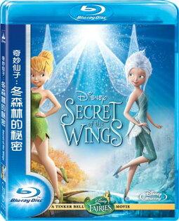 奇妙仙子:冬森林的秘密BD
