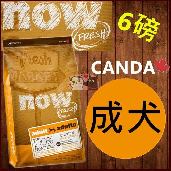 +貓狗樂園+ 加拿大NOW【鮮肉無穀天然糧。成犬配方。6磅】1150元 - 限時優惠好康折扣