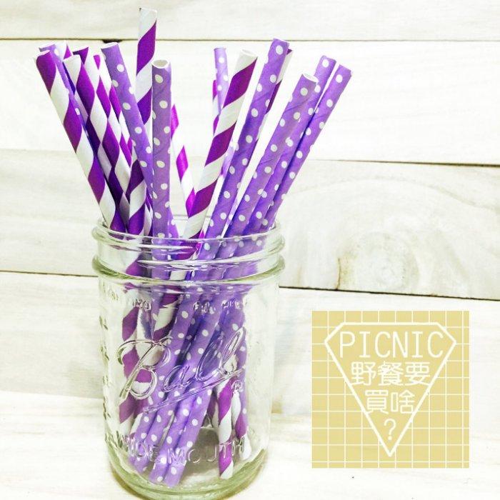 《野餐要買啥》紫色夢幻彩色環保紙吸管(宴會派對生日婚禮梅森瓶果汁飲料玻璃罐)