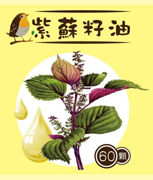 雪菲紫蘇籽油 omega-3 軟膠囊 500mg*60顆/瓶 超臨界常溫萃取 精純不氧化