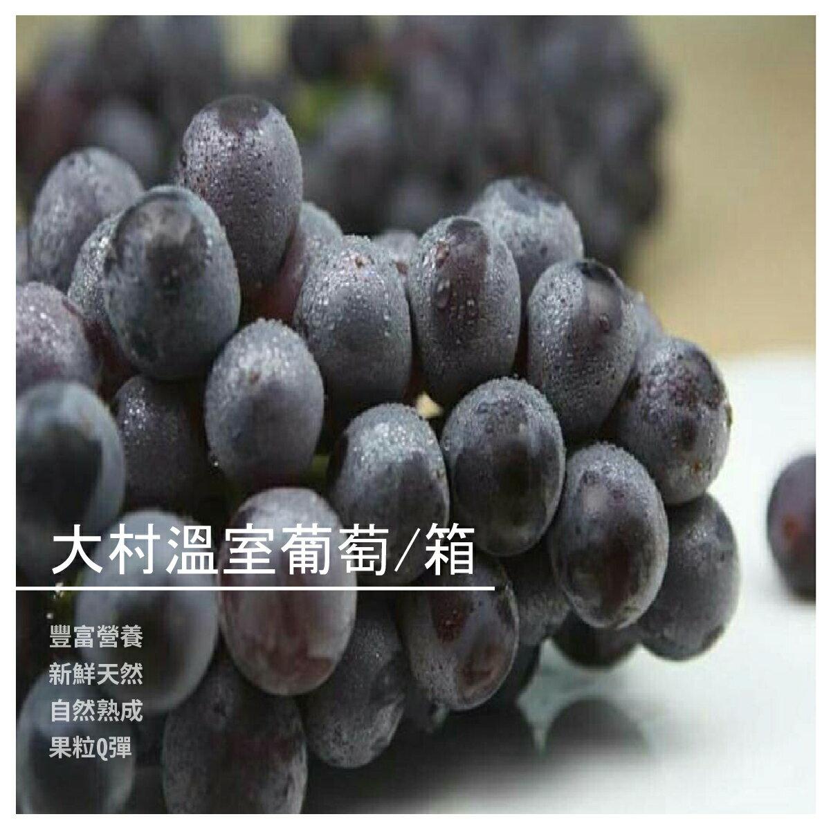 【大雪山甜霖果園】大村溫室葡萄/箱