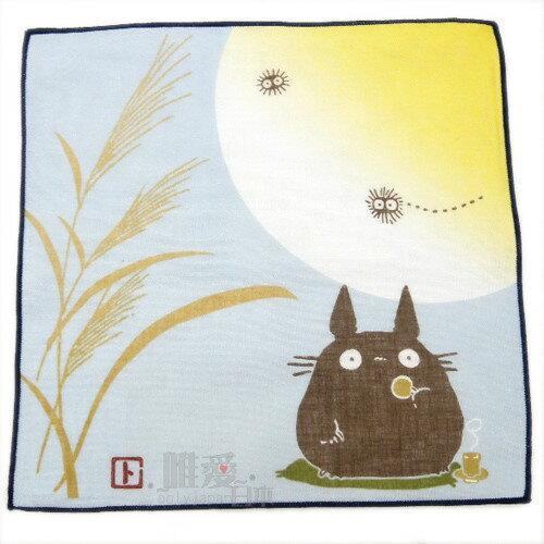 <宮崎駿會館>7042300002 日本製四季紗布小方巾-月夜蘆葦 龍貓 TOTORO 豆豆龍 小手帕