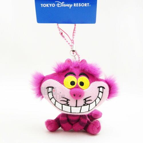 【唯愛日本】14012300009 DN娃鎖圈-妙妙貓 迪士尼專賣店帶回 愛麗絲仙境 鑰匙圈 吊飾 公仔