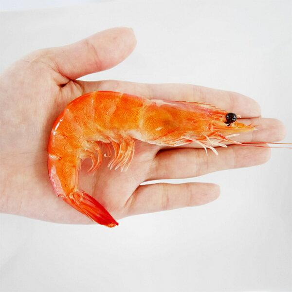 【璽富水產】台灣原味熟白蝦1kg盒(約54~60尾)