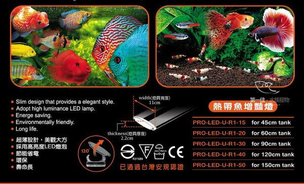 [第一佳水族寵物]台灣雅柏UP[5尺紅白燈熱帶魚增艷]U系列LED超薄跨燈(150cm)免運