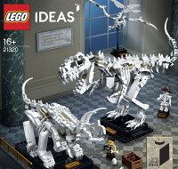 樂高積木 LEGO《 LT21320 》恐龍化石 Dinosaur Fossils-東喬精品百貨商城-媽咪親子推薦