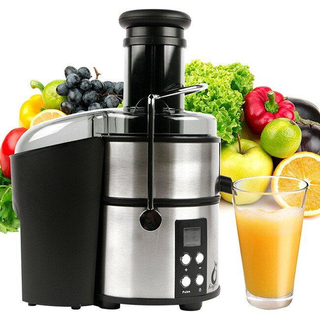 【鳳梨牌】e世健康榨汁機/果汁機/副食品/精力湯(直接投)EX-301SS