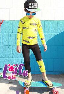 草魚妹:★草魚妹★F77惡鯊泳褲長袖泳衣兒童泳衣小朋友游泳衣正品,整套售價650元