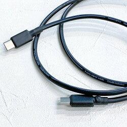 志達電子 DL056 日本鐵三角 Type C 公對公 c-to-c 雙頭傳輸線 USB 2.0 隨身硬碟/MacBook/iPad適用