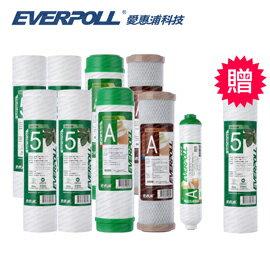 EVERPOLL愛惠浦科技 標準型10英吋一年份濾芯[買9+送1]
