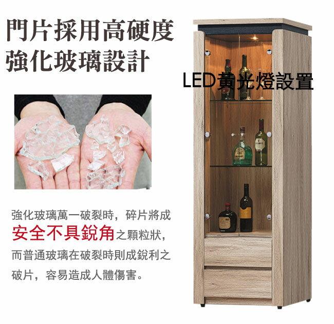 【綠家居】倫坡 現代2尺多功能展示櫃/收納櫃
