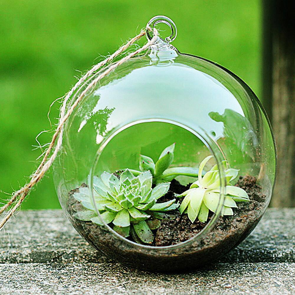 透明圓玻璃花瓶水培花卉植物吊掛家辦婚禮花園裝飾