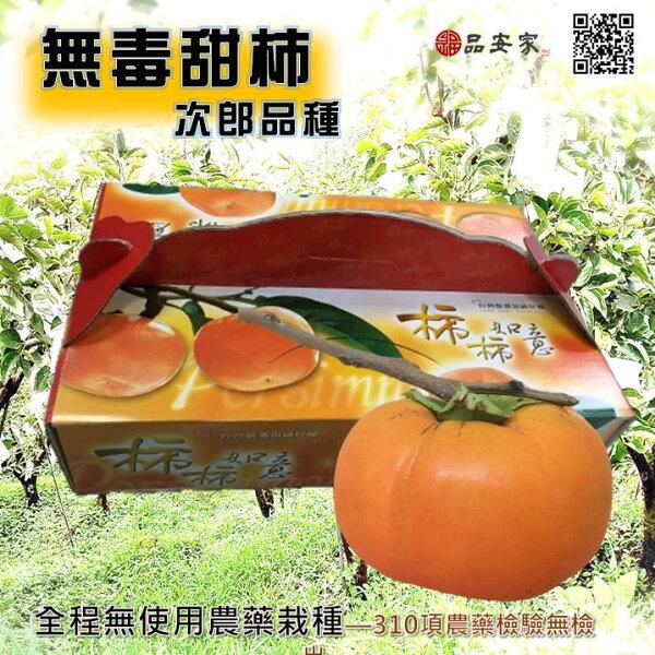 東勢甜柿【無毒栽種】次郎品種**九月底現採直送《已經產季囉》