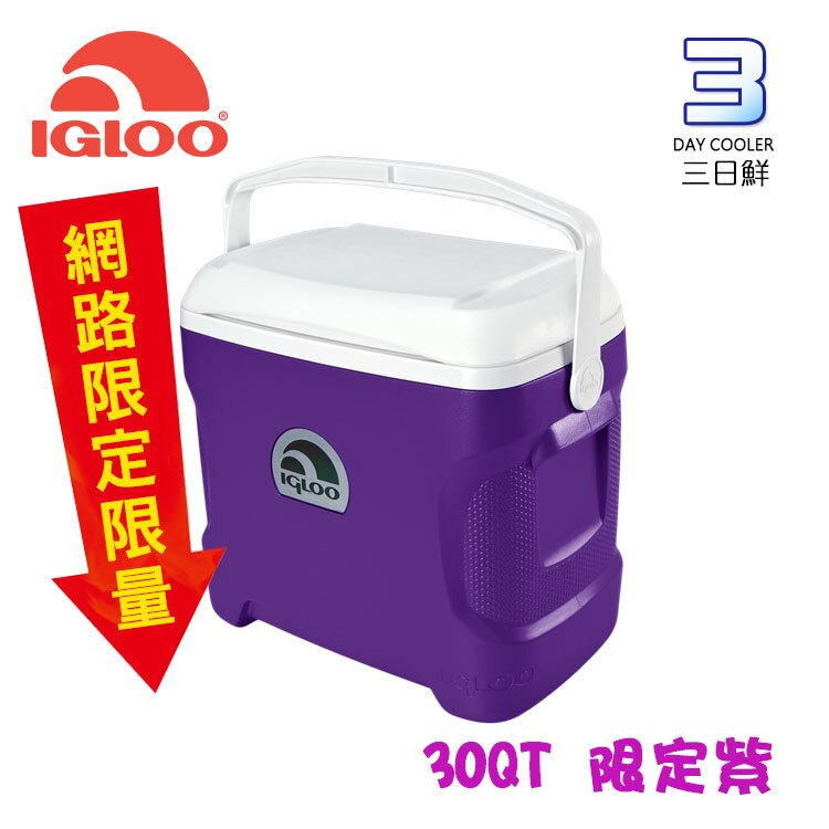 IgLoo 30QT冰桶 紫色