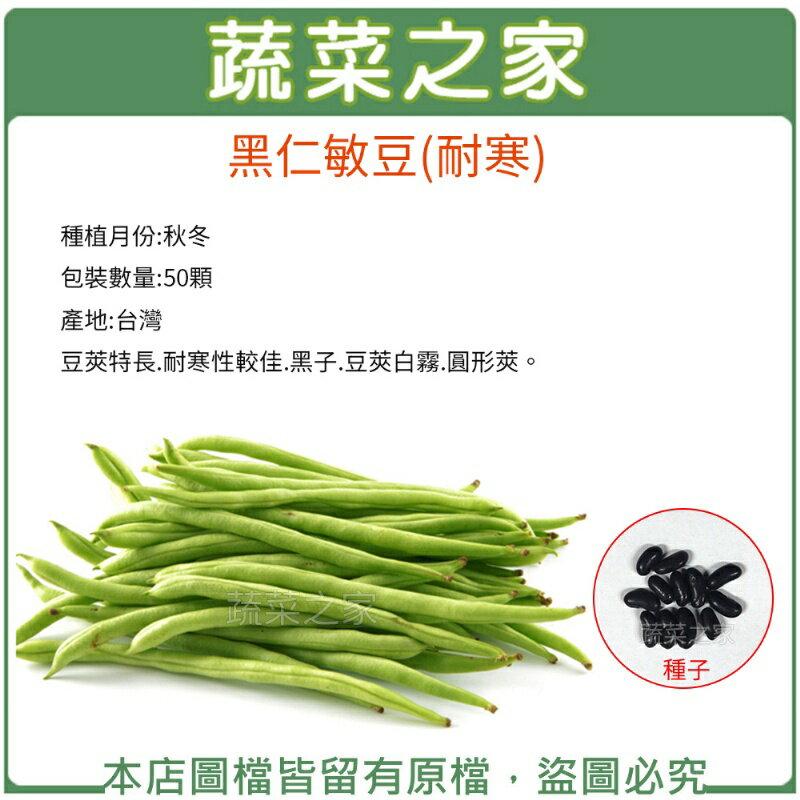 【蔬菜之家】E16.黑仁敏豆(耐寒)種子50顆