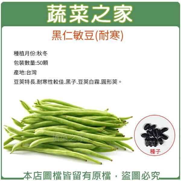 蔬菜之家:【蔬菜之家】E16.黑仁敏豆(耐寒)種子50顆