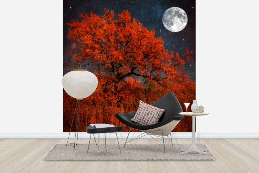 萬聖節背景牆 訂製壁畫 Halloween Tree e24789