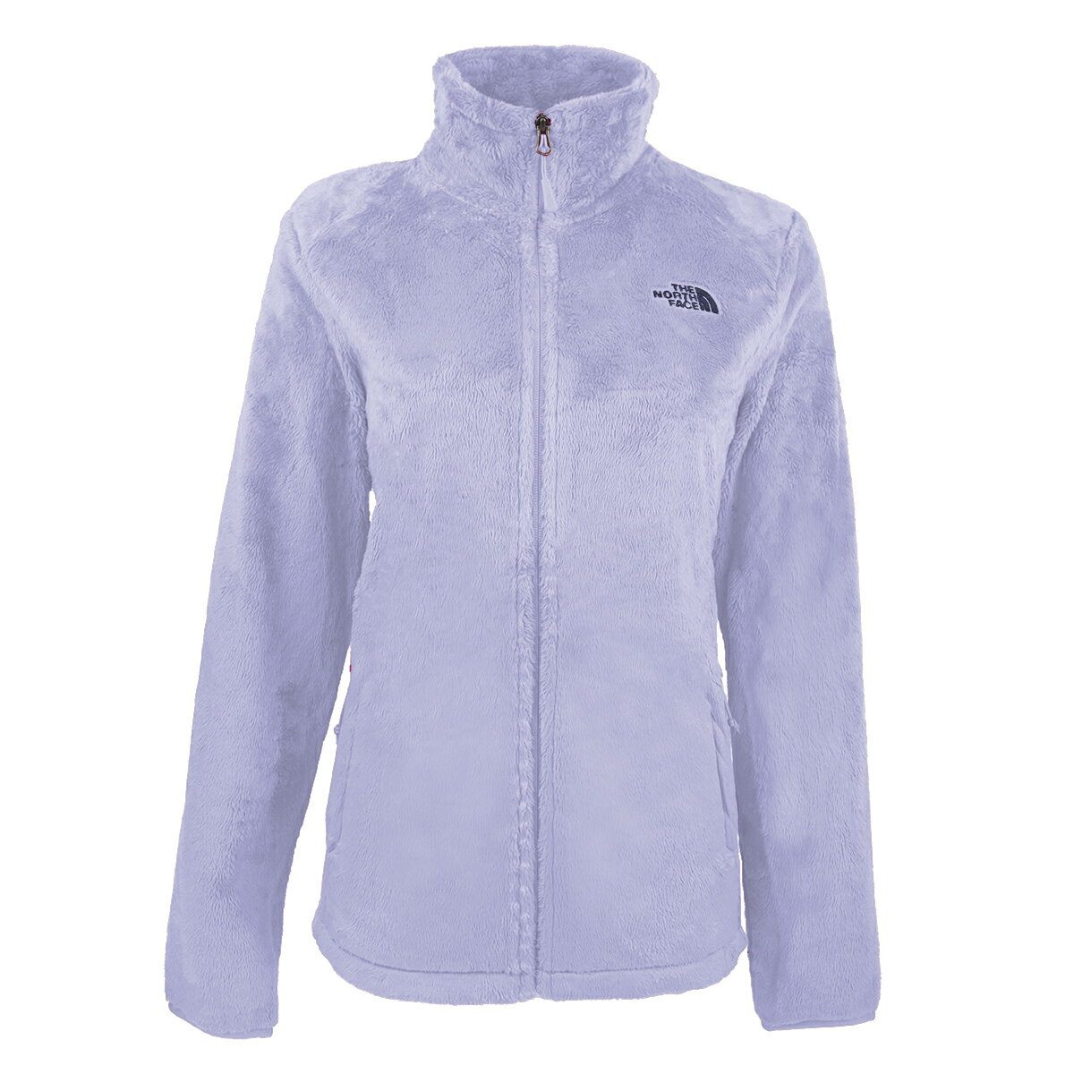 38f820a94 The North Face Women's Osito 2 Fleece Jacket Clear Lake Blue/Blue 2XL