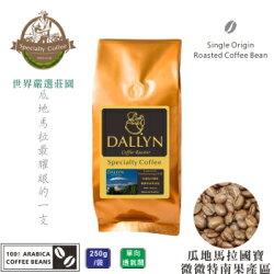 【DALLYN 】瓜地馬拉極品國寶 微微特南果產區 Guatemala Huehuetenego (250g/包)    世界嚴選莊園咖啡豆