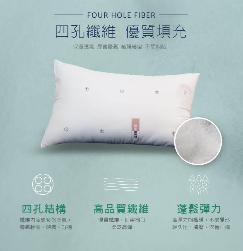【台灣製造】防蟎抗菌枕(二入) 舒眠 抑菌 防蟎 透氣  ✤朵拉伊露✤ 4