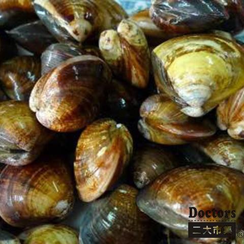 產地直送清淨海水養殖SPA文蛤*鮮甜*二大市集【Doctor嚴選-清淨海水養殖SPA文蛤】蛤蜊 每份約280~330g
