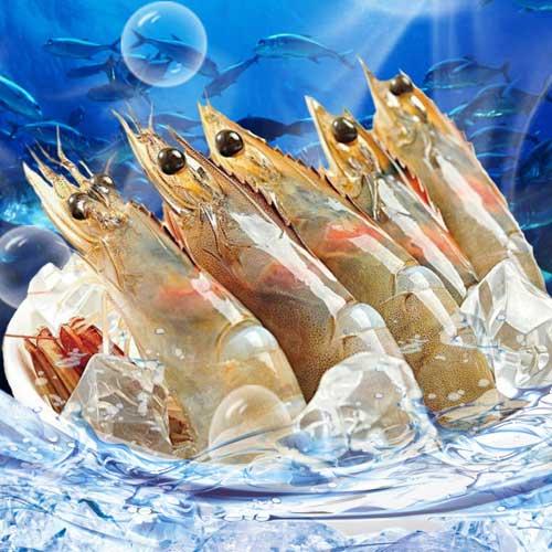 中南美生凍鮮甜大白蝦★優食網海鮮肉品專家