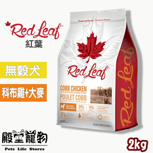 加拿大紅葉 Redleaf- / 天然犬糧雞肉+大麥 / 無穀犬糧安格斯牛肉 / 狗飼料-2kg 0
