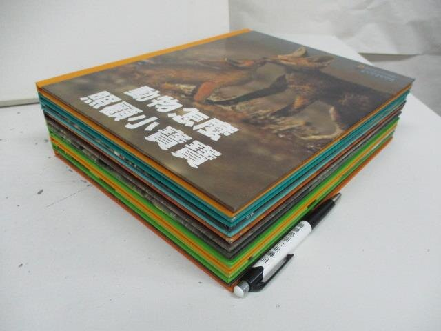 【書寶二手書T8/少年童書_DNL】動物怎麼照顧小寶寶_蜜蜂_海裡的寶藏等_共9本合售