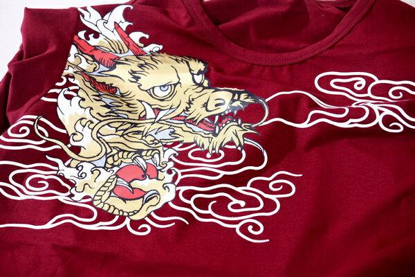 【CS衣舖 】韓系 合身版 萊卡彈力 短袖T恤 3110 4
