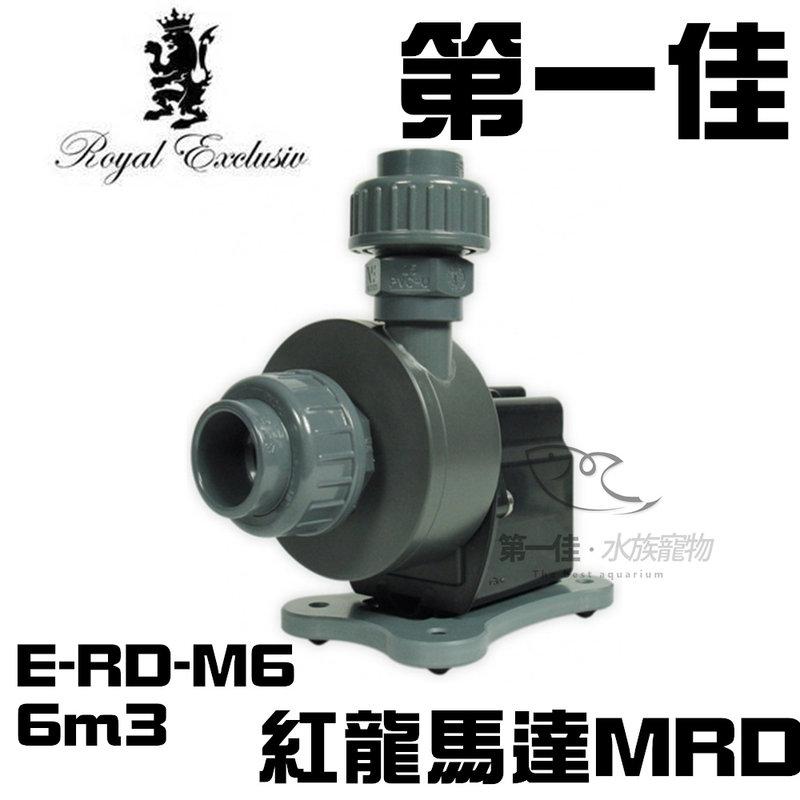 第一佳水族寵物  德國紅龍馬達ROYAL EXCLUSIV MRD E~RD~M6 6m
