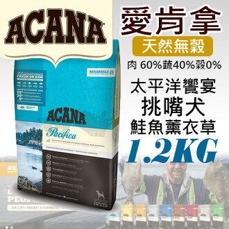 《愛肯拿ACANA》太平洋響宴 / 挑嘴犬無穀配方 - 鮭魚薰衣草1.2kg