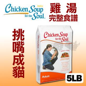 《美國雞湯》挑嘴成貓潔牙 / 抗氧化配方 - 5LB / 貓飼料